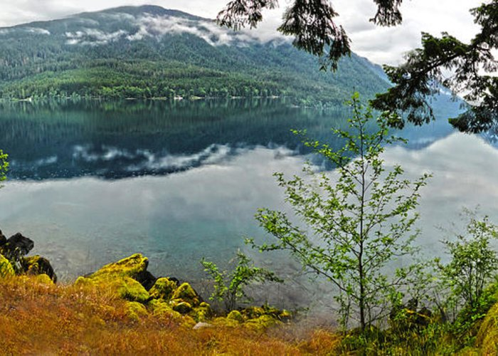 Lake Crescent Greeting Card featuring the photograph Lake Crescent - Washington - 02 by Gregory Dyer