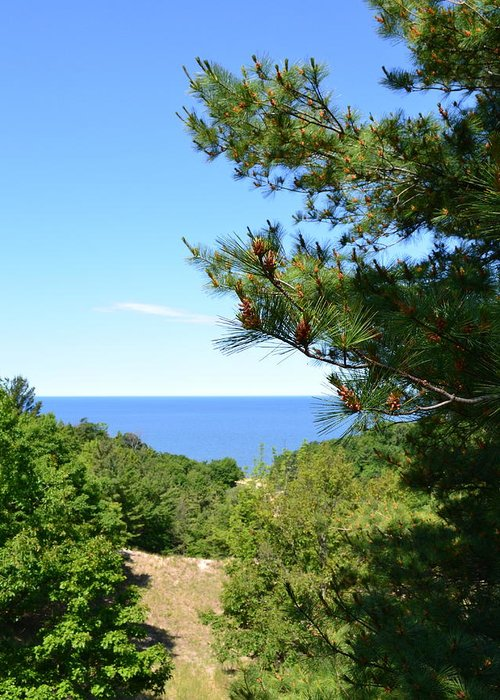 Lake Michigan Greeting Card featuring the photograph Lake Michigan From The Top Of The Dune by Michelle Calkins