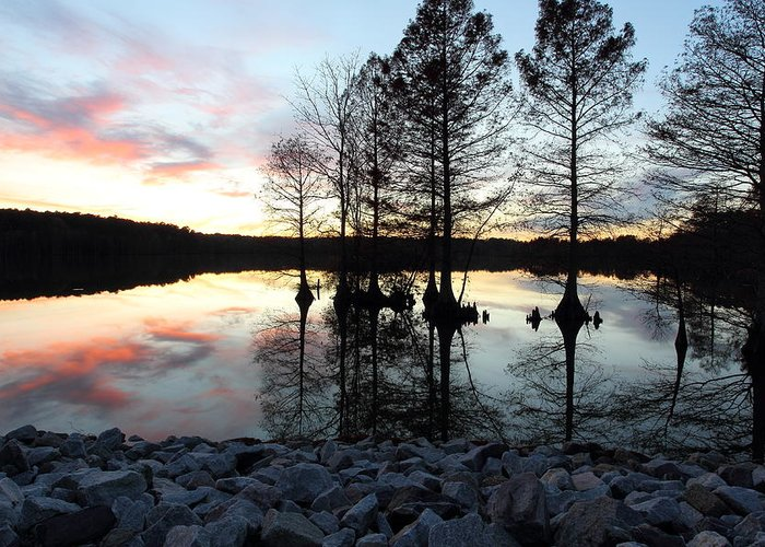 Sunset Greeting Card featuring the photograph Lake Reflections At Sunset by April Copeland