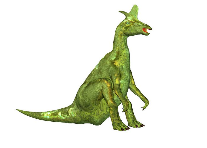 Hadrosaurid Greeting Cards