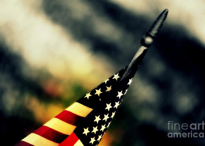 Flag Greeting Card featuring the photograph Land Of The Free - 2 by Susanne Van Hulst