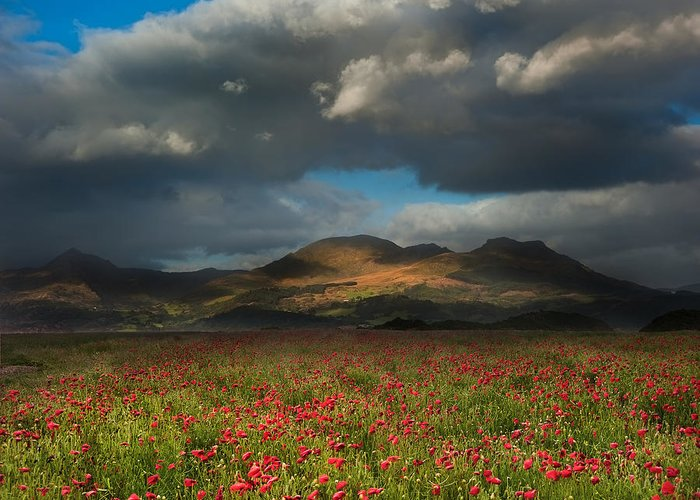 Landscape Greeting Card featuring the photograph Landscape Of Poppy Fields In Front Of Mountain Range With Dramat by Matthew Gibson