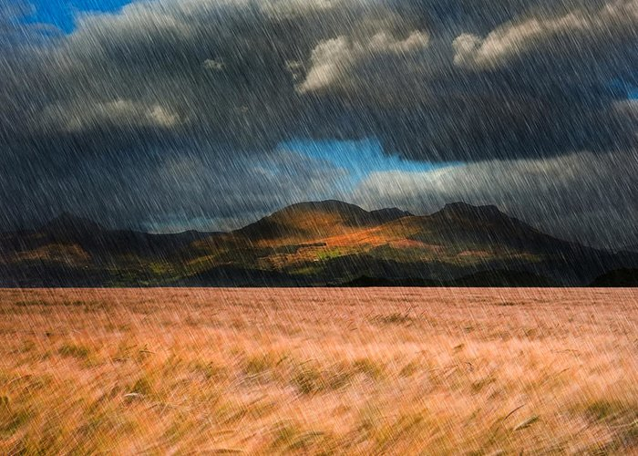 Landscape Greeting Card featuring the photograph Landscape Of Windy Wheat Field In Front Of Mountain Range With D by Matthew Gibson