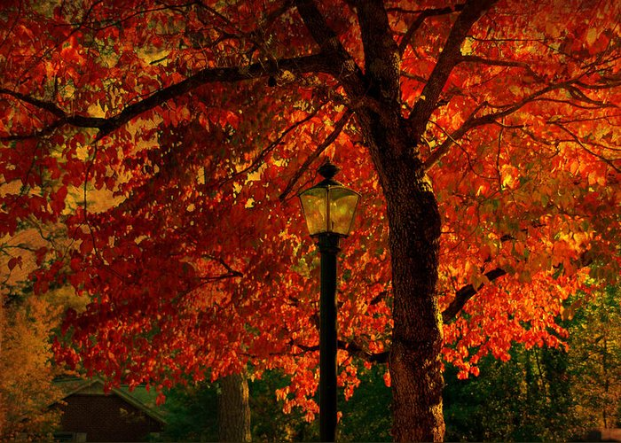 Autumn Greeting Card featuring the photograph Lantern In Autumn by Susanne Van Hulst