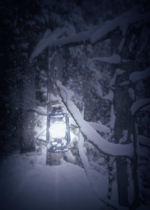 Lantern Greeting Card featuring the photograph Lantern In Snow by Joana Kruse