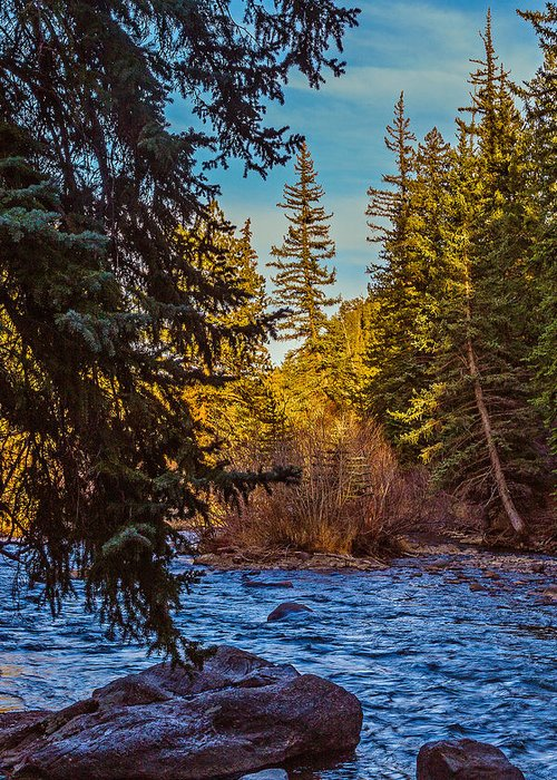 Colorado Greeting Card featuring the photograph Late Afternoon Along The South Platte by Mike Schaffner