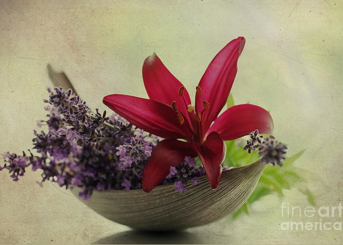 Flower Pictures Greeting Card featuring the photograph Lavender Boat With Lilies by Tanja Riedel