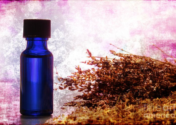 Aromatherapy Greeting Card featuring the photograph Lavender Essential Oil Bottle by Olivier Le Queinec