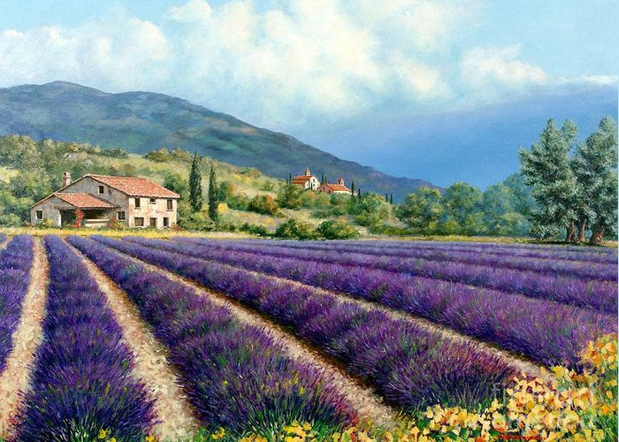 Provence Greeting Card featuring the painting Lavender by Michael Swanson