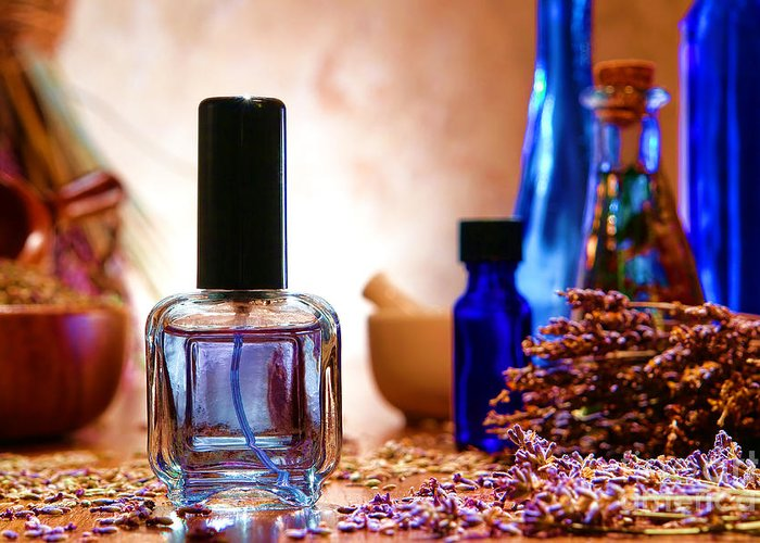 Aromatherapy Greeting Card featuring the photograph Lavender Shop by Olivier Le Queinec