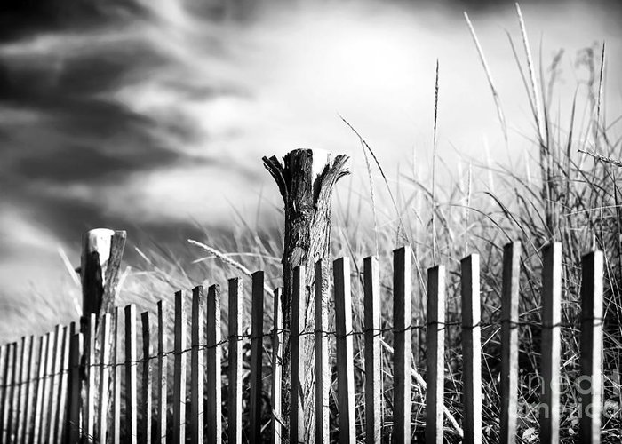 Lbi Days Greeting Card featuring the photograph Lbi Days by John Rizzuto