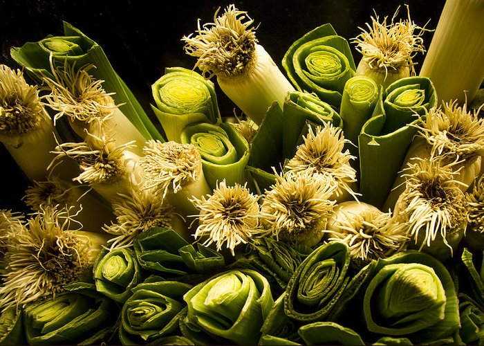 Jean Noren Greeting Card featuring the photograph Leeks by Jean Noren