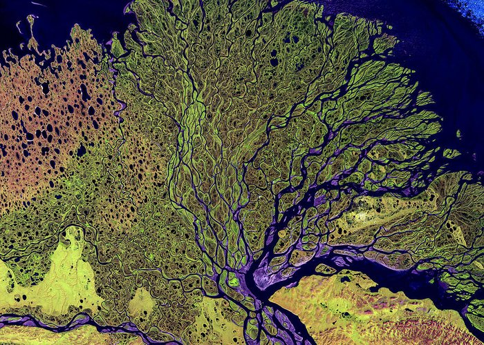 3scape Photos Greeting Card featuring the photograph Lena River Delta by Adam Romanowicz