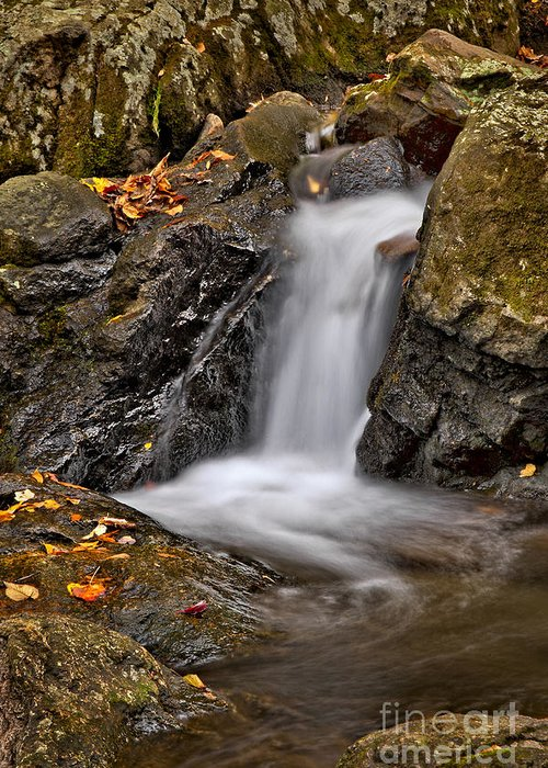 Fall Greeting Card featuring the photograph Lepetit Waterfall by Susan Candelario