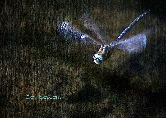 Dragonfly Greeting Card featuring the digital art Lessons From Nature 1 - Be Iridescent by Belinda Greb