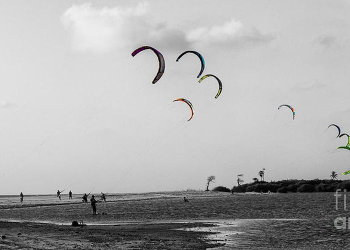 Bay Greeting Card featuring the photograph Let The Kites Fly by Christos Koudellaris
