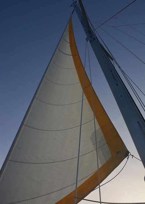 Sailing Against Blue Sky Greeting Card featuring the photograph Let's Sail by Tricia Andreassen