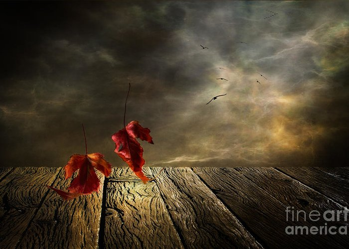 Art Greeting Card featuring the photograph Lets Twist Again by Veikko Suikkanen