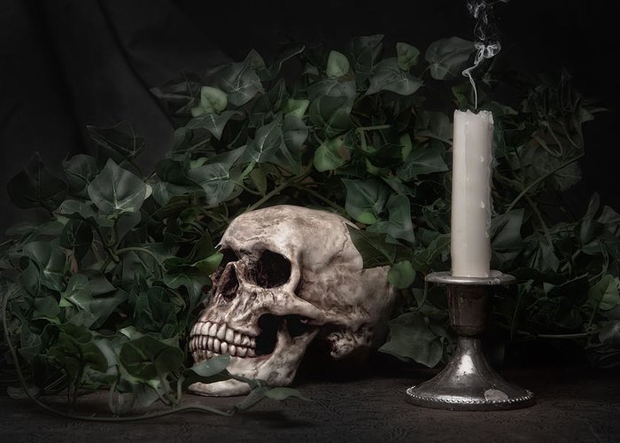 Bone Greeting Card featuring the photograph Life And Death by Tom Mc Nemar