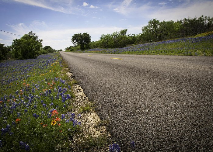 Spring Greeting Card featuring the photograph Life Is A Highway by Lynn Bauer