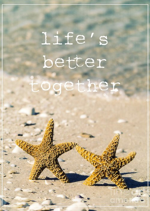 Seastar Greeting Cards