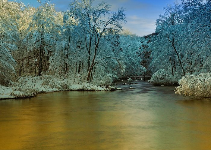Winter Greeting Card featuring the photograph Light After The Storm by Thomas Schoeller