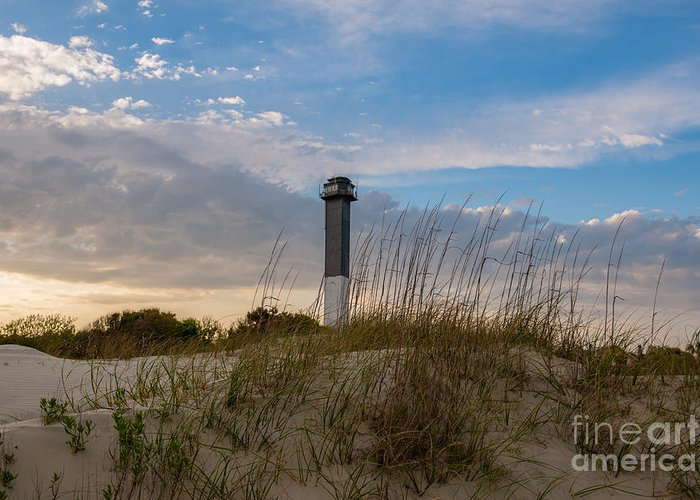 Sullivan's Island Lighthouse Greeting Card featuring the photograph Lighthouse Dunes by Dale Powell