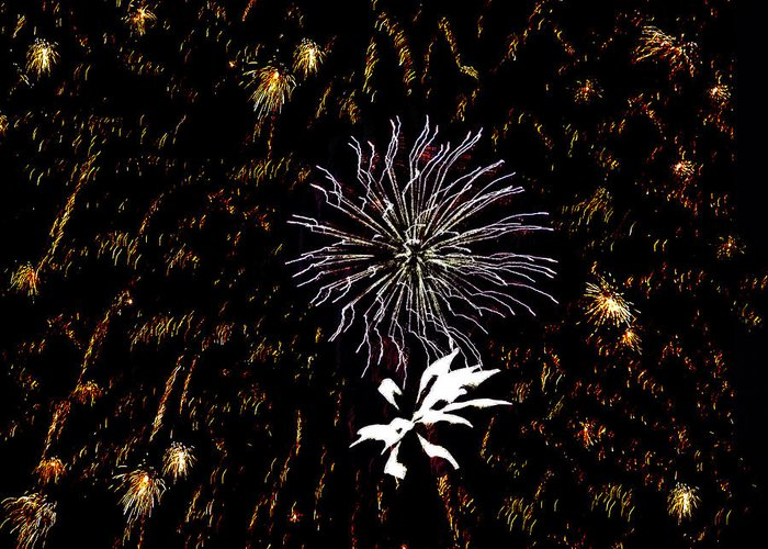 Fireworks Greeting Card featuring the photograph Lighting Up The Sky by Aimee L Maher Photography and Art Visit ALMGallerydotcom