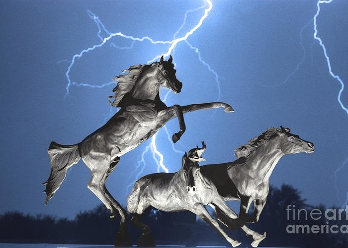 Greeting Card featuring the photograph Lightning At Horse World Bw Color Print by James BO Insogna