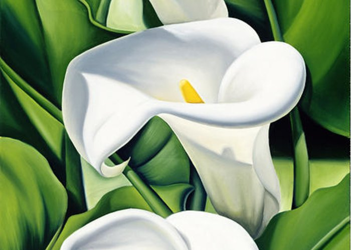 Lilies Greeting Card featuring the painting Lilies by Catherine Abel