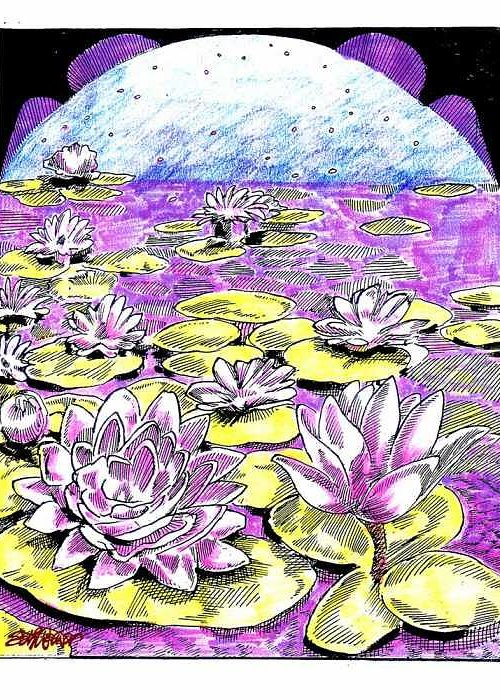 Lilies Of The Lake Greeting Card featuring the drawing Lilies Of The Lake by Seth Weaver