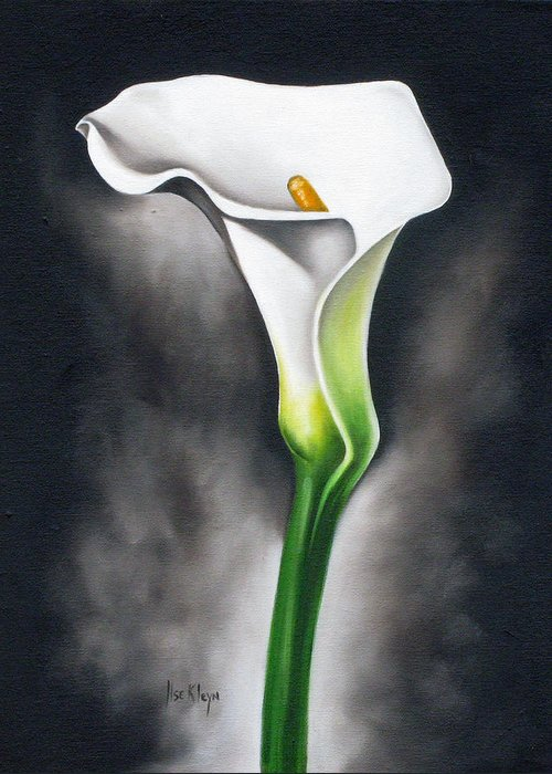 Lilly Greeting Card featuring the painting Lily by Ilse Kleyn