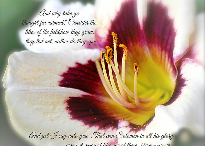#lily Greeting Card featuring the photograph Lily With Scripture by Debbie Nobile