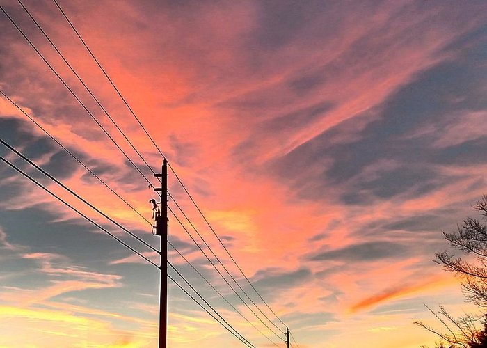 Sunset Greeting Card featuring the photograph Lined Up by Tyson Kinnison