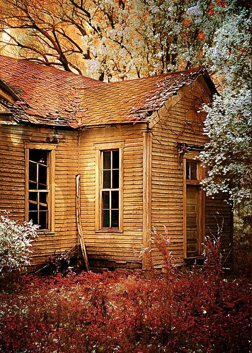 Old School House Greeting Card featuring the photograph Little Old School House II by Julie Dant