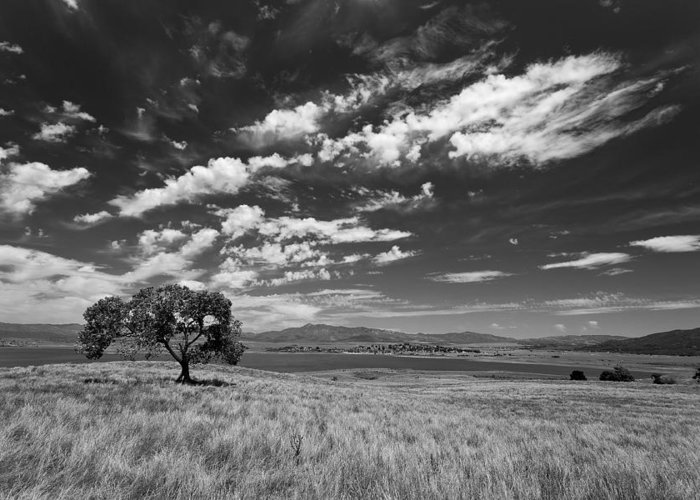 Big Sky Greeting Card featuring the photograph Little Prarie Big Sky - Black And White by Peter Tellone