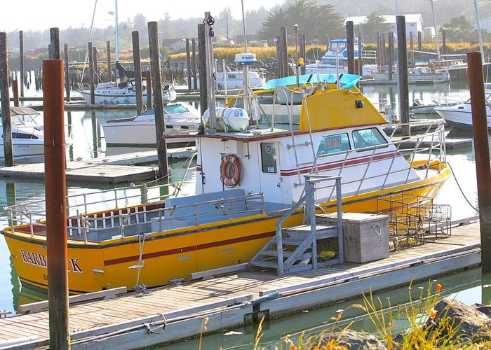 Yellow Boat Greeting Card featuring the photograph Little Yellow Boat by Lisa Billingsley