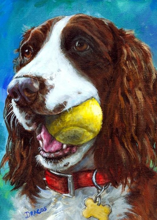 Dogs Greeting Card featuring the painting Liver English Springer Spaniel With Tennis Ball by Dottie Dracos
