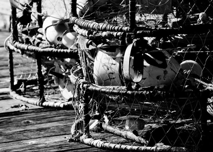 Lobster Greeting Card featuring the photograph Lobster Pots by Puget Exposure