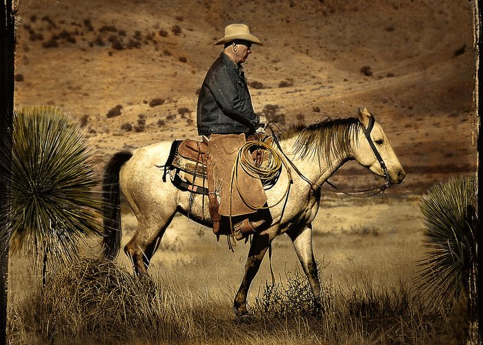Horse Greeting Card featuring the photograph Lone Cowboy by John Forrey