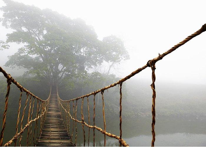 Jungle Journey Bridge Greeting Card featuring the photograph Long Rope Bridge by Skip Nall