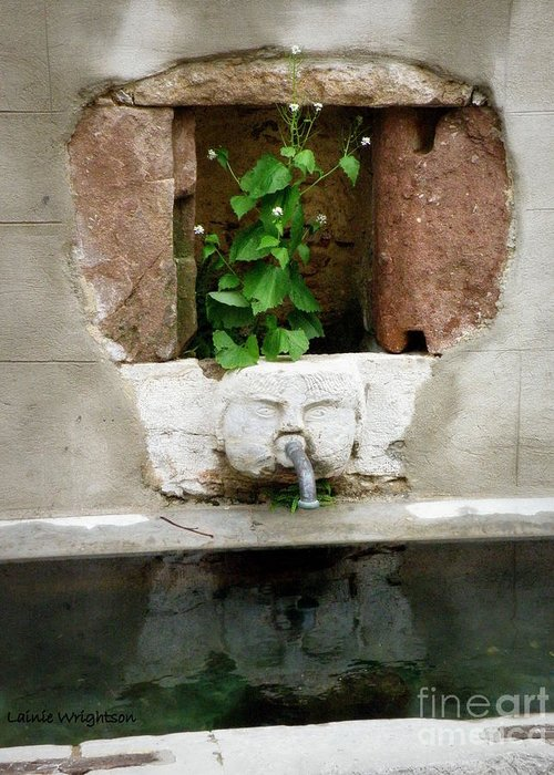 Fountain Greeting Card featuring the photograph Looking Deeper by Lainie Wrightson