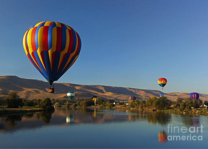 Balloons Greeting Card featuring the photograph Looking For A Place To Land by Mike Dawson