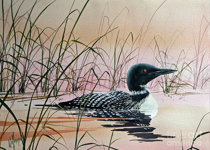 Loon Greeting Card featuring the painting Loon Sunset by James Williamson