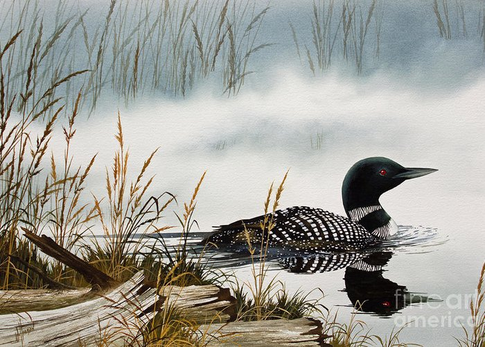 Loons Greeting Cards