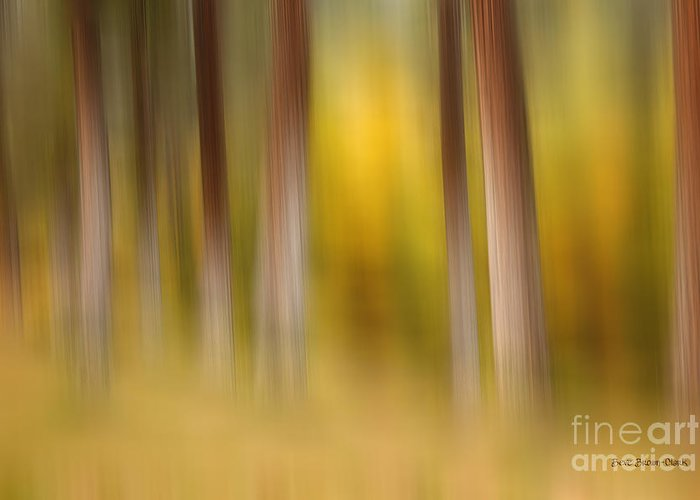 Abstract Greeting Card featuring the photograph Lost In Autumn by Beve Brown-Clark Photography