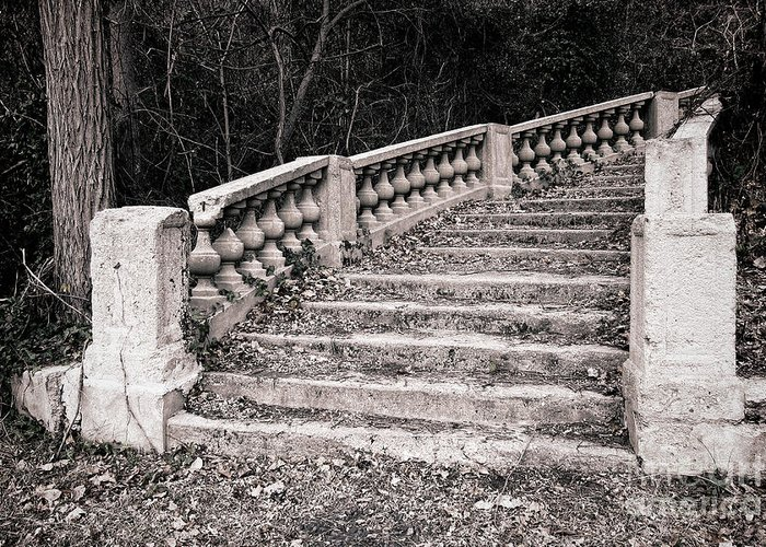 Stairs Greeting Card featuring the photograph Lost Staircase by Olivier Le Queinec