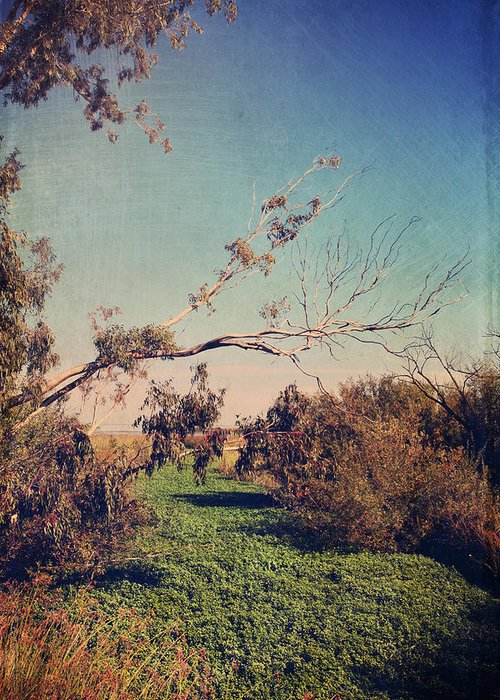 Big Break Regional Shoreline Park Greeting Card featuring the photograph Love Lives On by Laurie Search