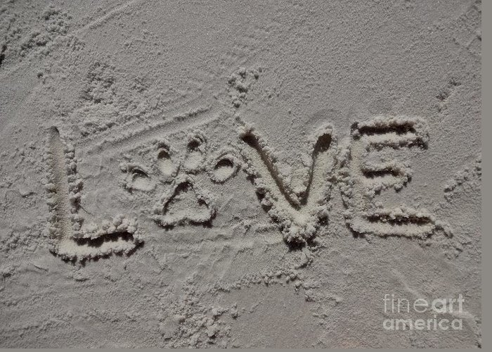 Love Greeting Card featuring the photograph Love by Megan Cohen