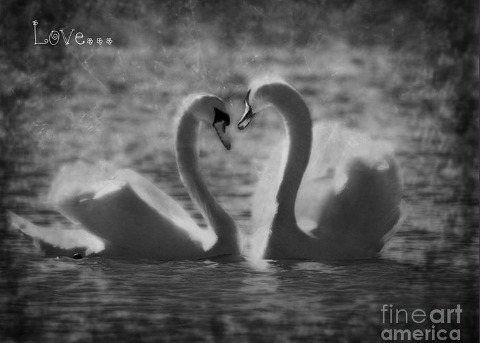 Valentine Greeting Card featuring the photograph Love... by Nina Stavlund